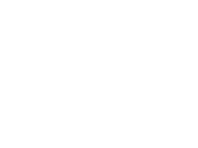 Bernd M. Schell Logo